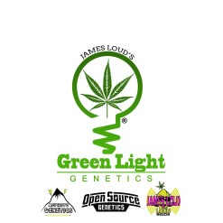 JAMES LOUD'S GREEN LIGHT GENETICS