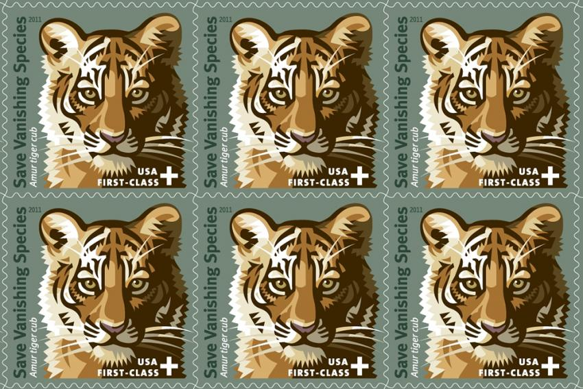 4 ways to celebrate and take action on Global Tiger Day ...