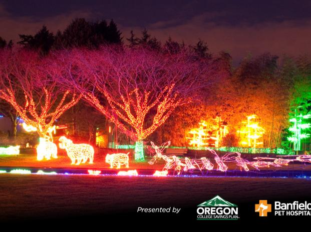 Zoo Lights Oregon 2017