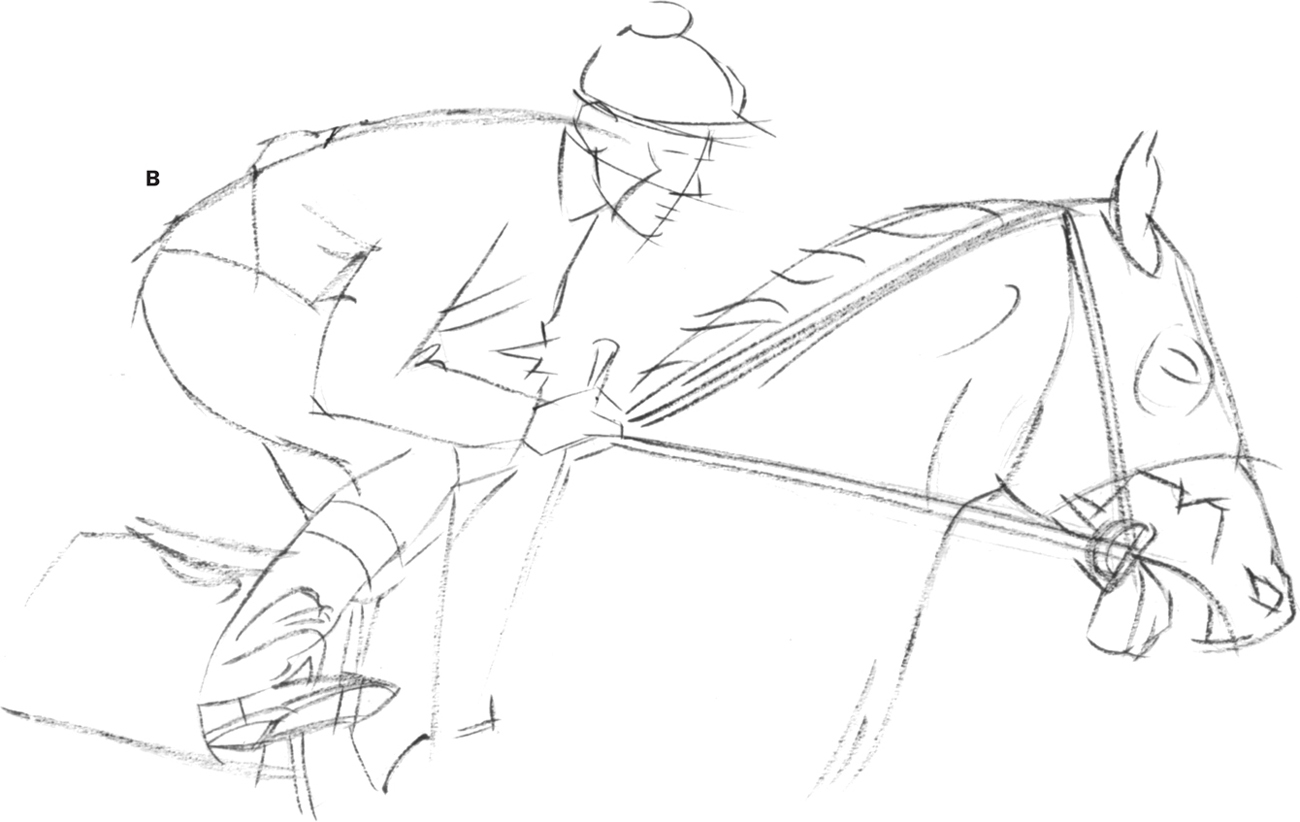 Line Drawing Horse Racing