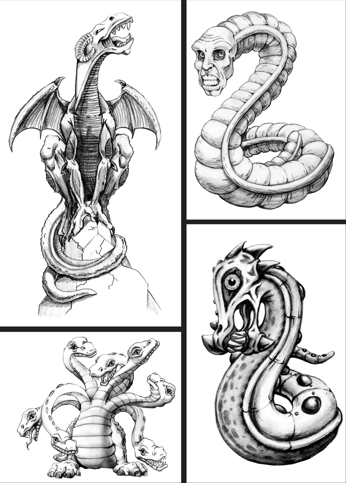 Chapter 2 Types Of Dragons The Art Of Drawing Dragons Book