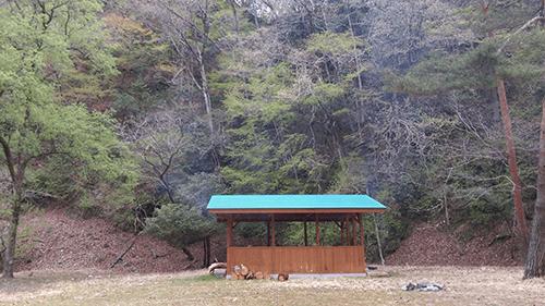 二軒屋キャンプ場風景