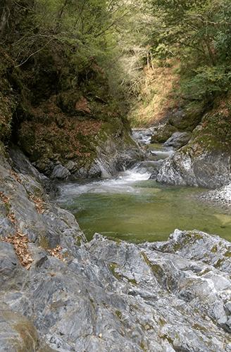 二軒屋キャンプ場側の川