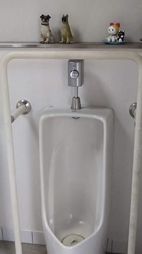 野田山健康緑地キャンプ場トイレ