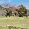上島キャンプ場サイト2