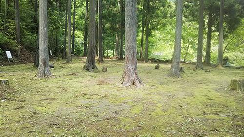 秘密村林間サイト