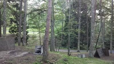 しだれ栗森林公園キャンプ場内