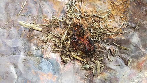 枯れ草に着火