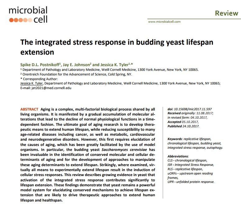 The integrated stress response in budding yeast lifespan