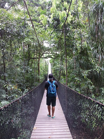 green therapy and walking in nature