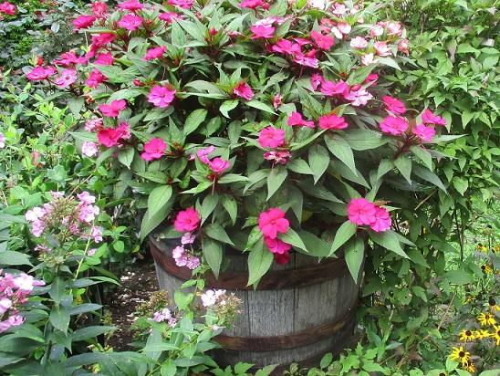 DIY flower barrel