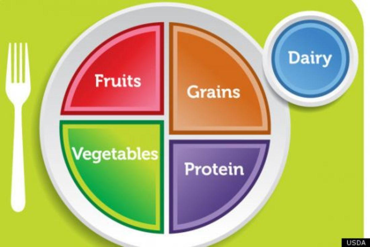 The Usda Food Guide Pyramid Is Now A Plate