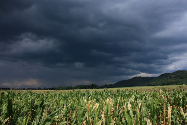 Climate Change Report Predicts Major Food Shortages ...