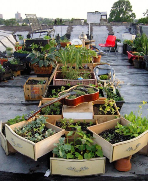 rooftop garden 8 Awesome Rooftop Gardens from Around the World - Organic