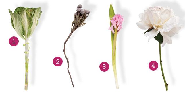 winter-bouquet-elements