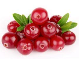 Resultado de imagem para cranberry