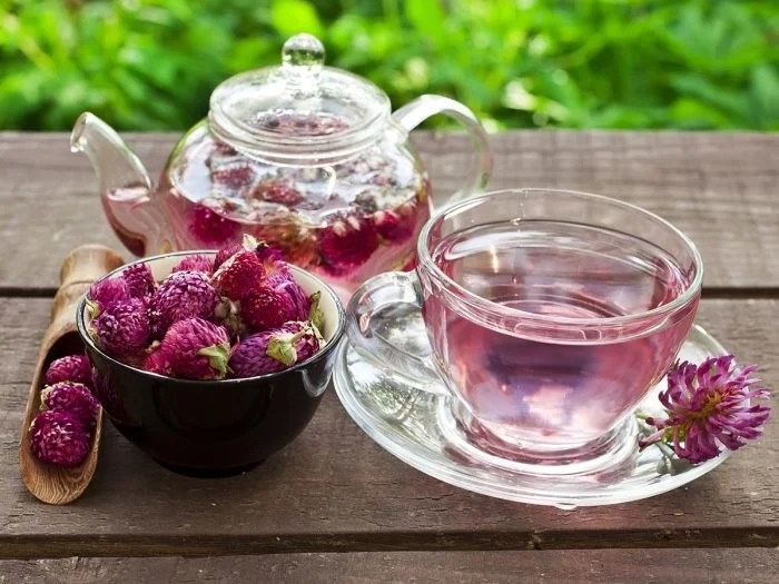 Image result for Red clover tea