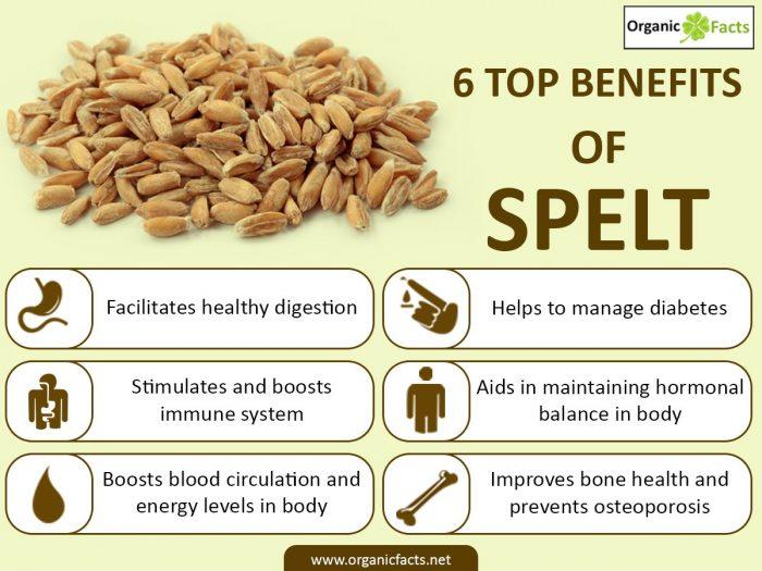 Benefits Spelt Flour