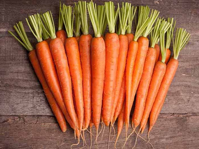 Image result for carrots cancer is real!! expert reveals food to eat to prevent cancer [checkout] CANCER IS REAL!! EXPERT REVEALS FOOD TO EAT TO PREVENT CANCER [CHECKOUT] storecarrots