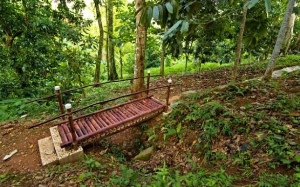 "bamboo garden bridge ""2010"" ECO-ORGANIC FRUIT NURSERY"