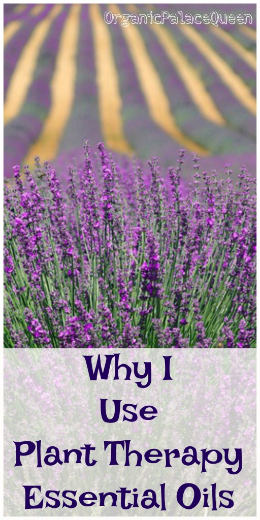 Are Plant Therapy essential oils okay to use