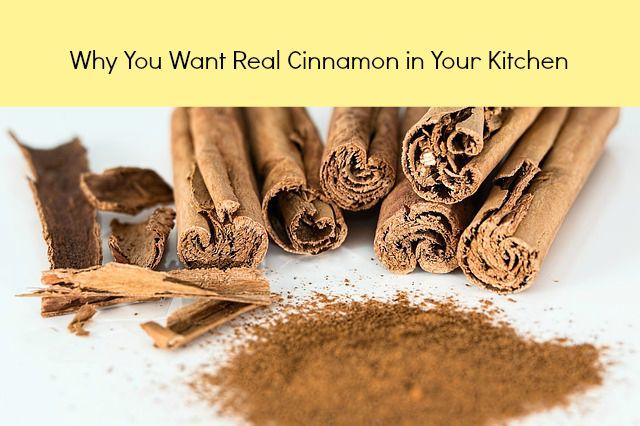 where can I find Ceylon cinnamon powder