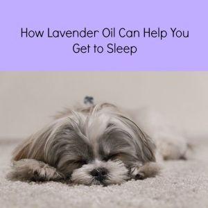 does lavender oil help sleep