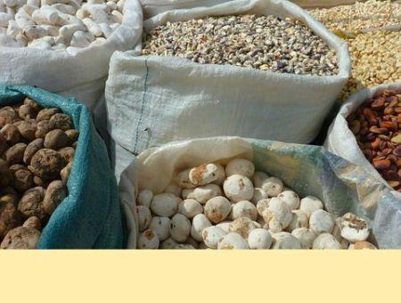where to buy peruvian maca root