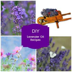 lavender essential oil blend recipes