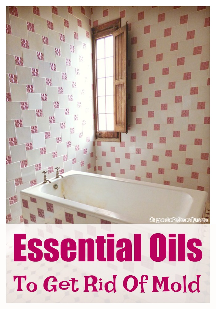 best essential oil to kill mold organic palace queen. Black Bedroom Furniture Sets. Home Design Ideas