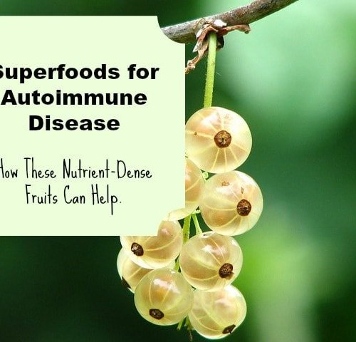 Superfoods for autoimmune disease
