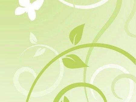 Plantlife patchouli oil