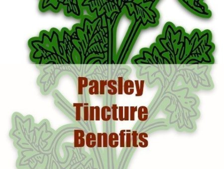 parsley tincture benefits