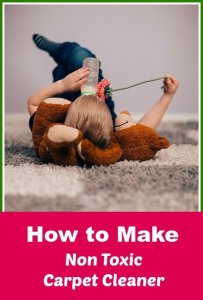 homemade non toxic carpet cleaner
