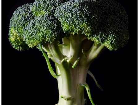 organic food and fibromyalgia