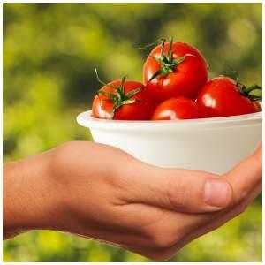 vitamins for fibromyalgia