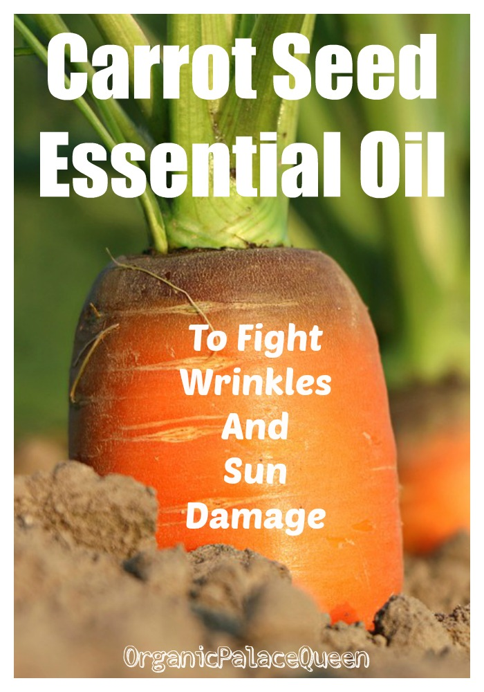 Carrot seed essential oil for wrinkles