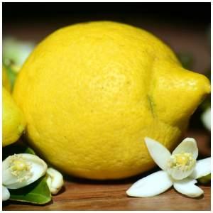 lemon essential oil for colds