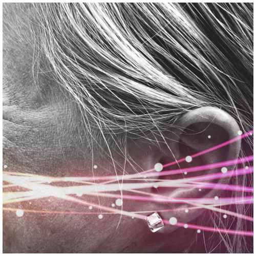 ginkgo biloba benefits for ear ringing