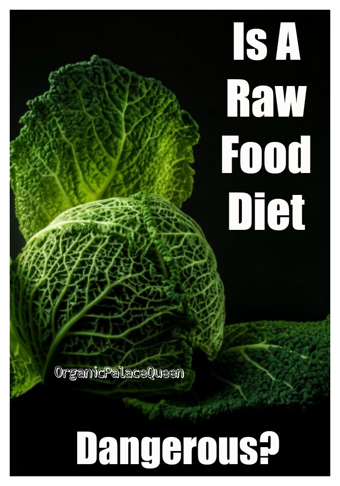 Are raw food diets bad for you