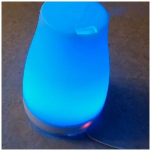Essential oil diffuser vs warmer