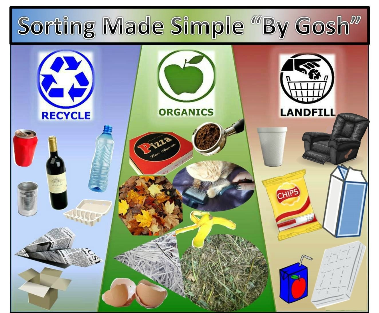 Sorting Made Simple What Goes In The Organics Bin