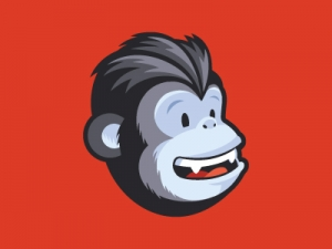 Learn to use Mailchimp in Melbourne