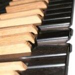 Viscount Tastiera ricoperta in legno