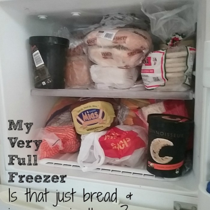 Have An Organised Freezer In 15 Minutes Or Less (And Free Freezer Inventory Printable!)