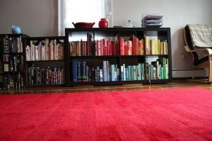 ¡Disfruta de tus e-books! ¡Organízalos!