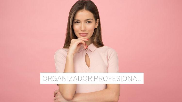 Organizador Profesional Precios