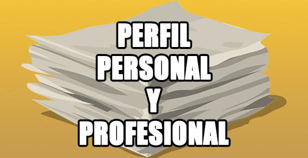 perfil profesional personal empleo en internet