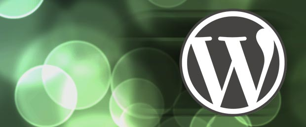 Rapid WordPress
