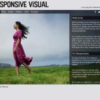 Responsive Visual